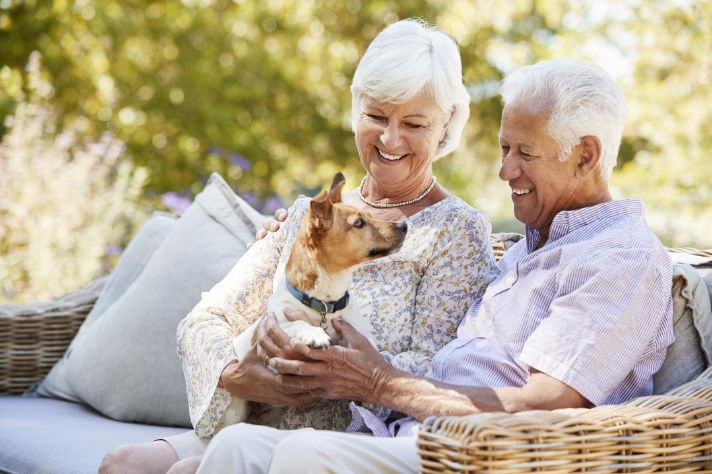 an elderly couple sitting on a bench outdoors with their small dog